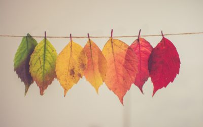 Health and Wellbeing with the changing seasons